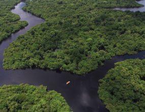 Senador alerta sobre riscos para o país caso ministro altere normas do Fundo Amazônia