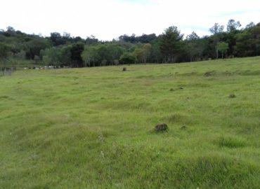 Projeto proposto por Jader Barbalho incluiu imóvel rural em aquisição pelo FGTS