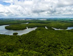 """""""Brasil não pode abdicar do Fundo Amazônia"""" defende senador Jader"""