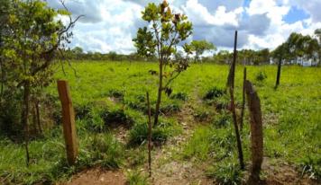 Jader Barbalho pede ampliação de propostas de regularização fundiária no Pará