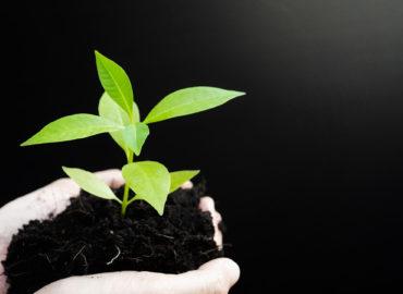 Jader comemora projeto que diminui impactos no meio ambiente