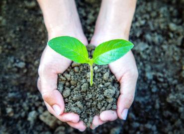 Jader defende projeto que vai agregar sustentabilidade à produção no Pará