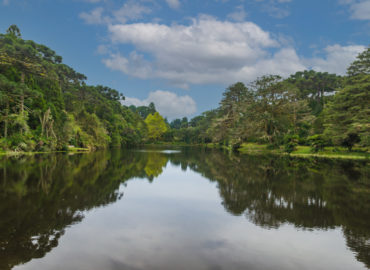 Jader pede criação de zoneamento ecológico