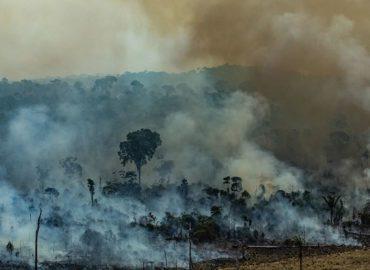 Queimadas aumentam na Amazônia e senador Jader cobra ações do governo federal